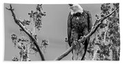 Bald Eagle Warning In Black And White Beach Towel