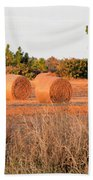 Bales Beach Towel