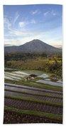 Bali Terrace Rice Field Beach Towel