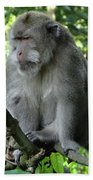Balinese Monkey In Tree Beach Sheet