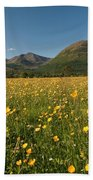 Ballachulish Beach Towel