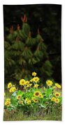 Balsamroot And Evergreen Beach Towel