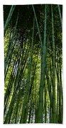 Bamboo 01 Beach Towel