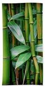 Bamboo Green Beach Towel