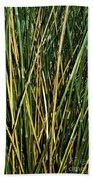 Bamboo Shoots  Beach Towel
