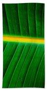 Banana Plant Leaf Beach Sheet