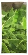 Banana Plantation Beach Towel