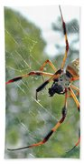 Banana Spider Beach Towel
