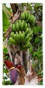 Bananas In Africa Beach Towel