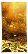 Banishing Rain Forest Shadows Beach Towel