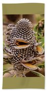 Banksia Cone Beach Towel