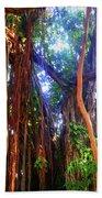Banyan Tree Beach Sheet