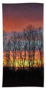 Bare-branched Beauty Beach Towel