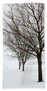 Bare Winter Trees Beach Sheet
