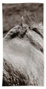Bareback Beach Towel