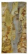 Bark Kc03 Beach Towel