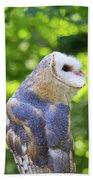 Barn Owl Looking Skyward Beach Towel
