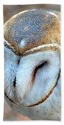 Barn Owle 1 Beach Towel