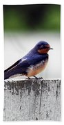 Barn Swallow At Fort Larned Beach Towel