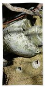 Barnacles And Crabs Beach Towel