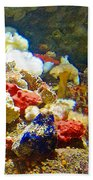 Barnacles And Sea Urchin Among Invertebrates In Monterey Aquarium-california  Beach Towel