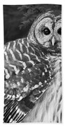Barred Owl Beauty Beach Towel