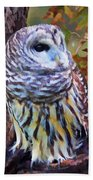 Barred Owl In The Rain Oil Painting Beach Towel