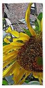 Barrio Sunflower 3 Beach Towel