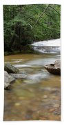 Bartlett Experimental Forest - Bartlett New Hampshire Usa Beach Towel by Erin Paul Donovan