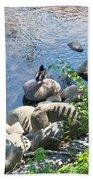 Basking On A Rock Beach Towel