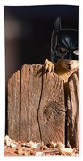 Bat Squirrel  The Cape Crusader Known For Putting Away Nuts.  Beach Towel