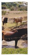 Bathing Horse Beach Towel