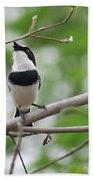 Batis Bird Beach Towel