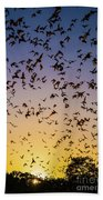 Bats At Bracken Cave Beach Towel