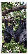 Bats Hanging Out Beach Towel