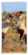 Battle Of The Paints Beach Towel