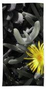 Be Different Beach Towel by Lynn Geoffroy