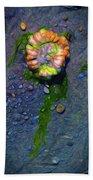 Beach Barnacle Flower Beach Towel