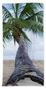 Beach Coco Beach Towel