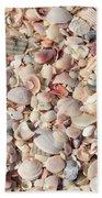 Beach Seashells Beach Towel