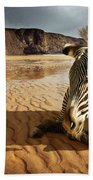 Beach Zebra Beach Towel