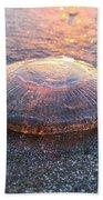 Beached Jellyfish Beach Towel