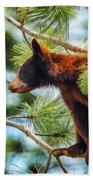Bear Cub In A Tree 3 Beach Towel