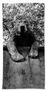 Bear On The Wall Beach Towel