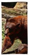 Bear Pacing Beach Towel