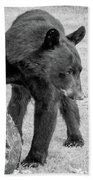 Bear's Log Stash Of Treats - Black And White Beach Towel