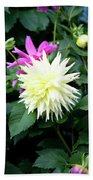 Beautiful And Fresh Dahlias In The Butchrt  Gardens,vancouver Island 2. Beach Towel