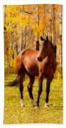 Beautiful Autumn Horse Beach Sheet
