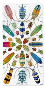 Beautiful Beetles Beach Towel
