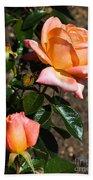 Beautiful Bloom Of The Rose Atlantic Star Beach Towel